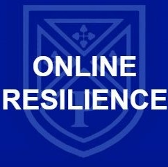 Online Resilience Button